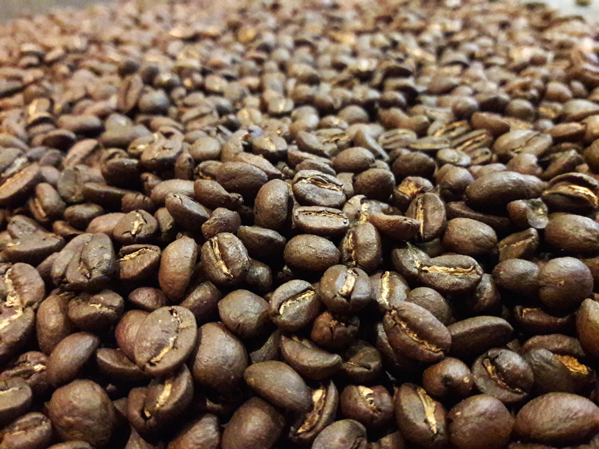 Grains de cafés torréfiés