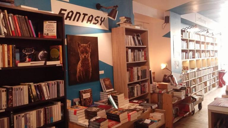 librairie-lzdd